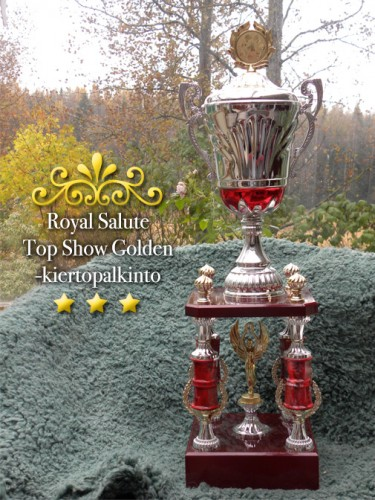 Royal Salute Top Show Golden -kieropalkinto